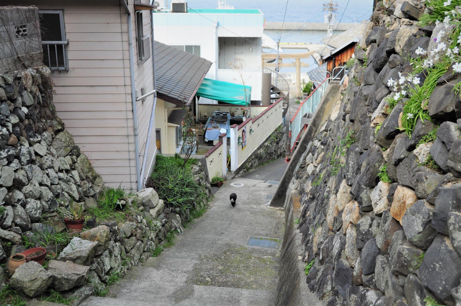 Ogijima: Labyrinthine Streets and Eye-catching Art-1
