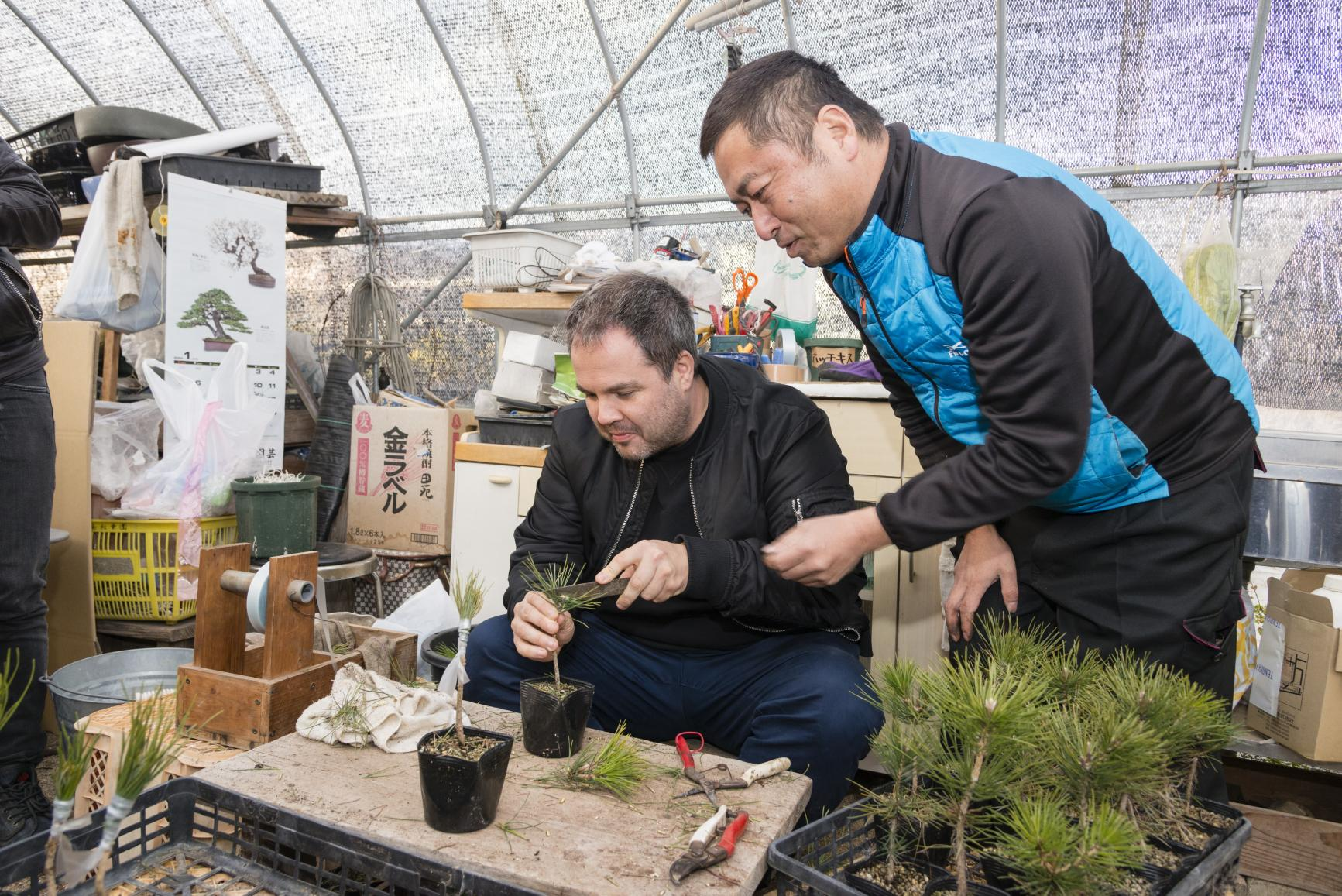 Bonsai Experience with Skilled Artisan at Japan's Top Growing Area-1